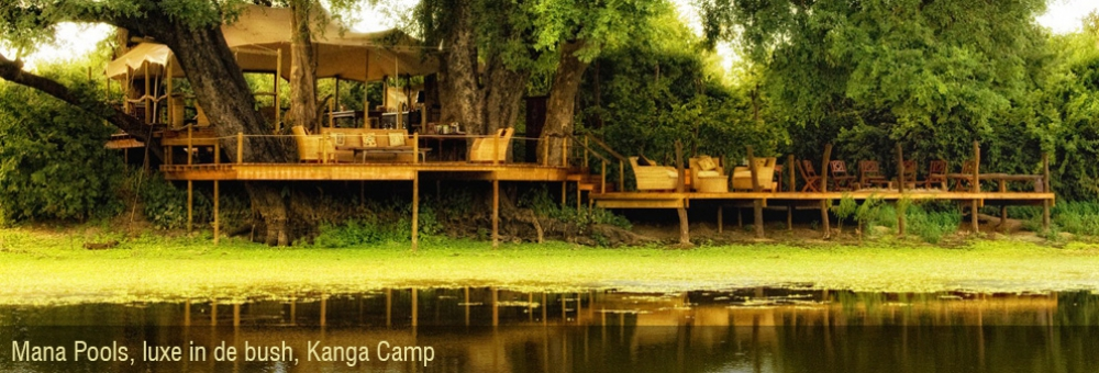 safari reizen Mana Pools